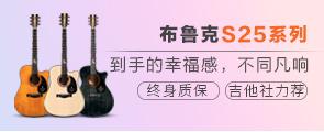布鲁克S25吉他