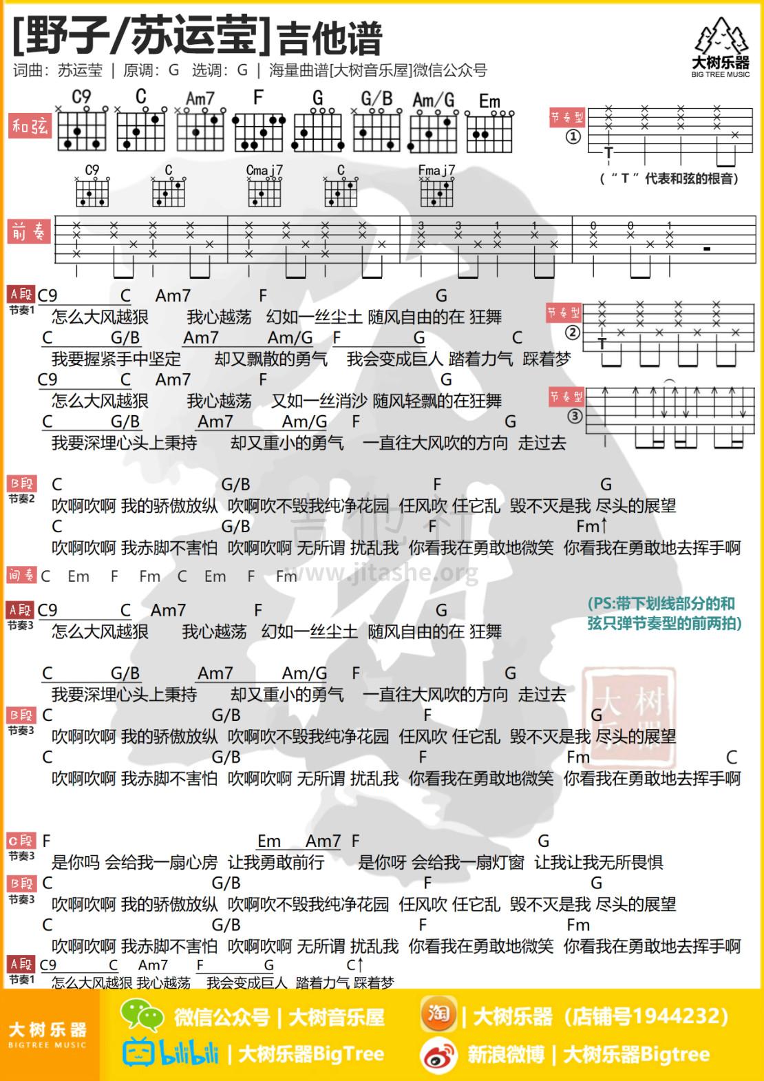 野子吉他谱(图片谱,弹唱,和弦谱,大树音乐)_苏运莹_模板_meitu_3_meitu_2_meitu_1.jpg