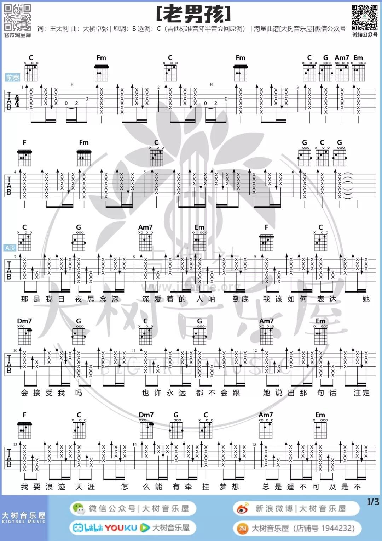 老男孩(大树音乐屋)吉他谱(图片谱,弹唱)_筷子兄弟(肖央;王太利)_2.webp.jpg
