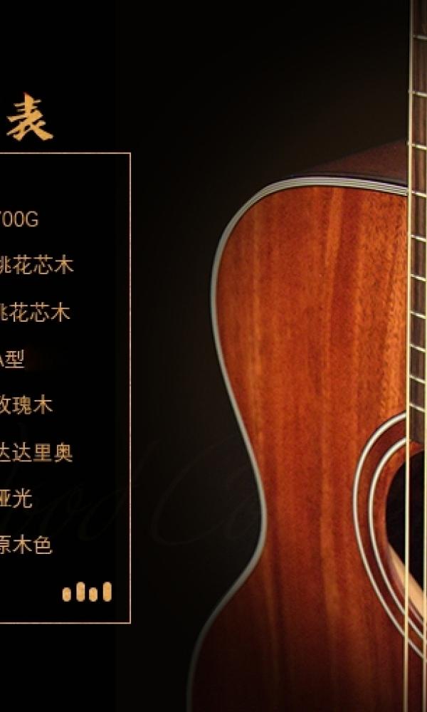闲置吉他[image.jpg]