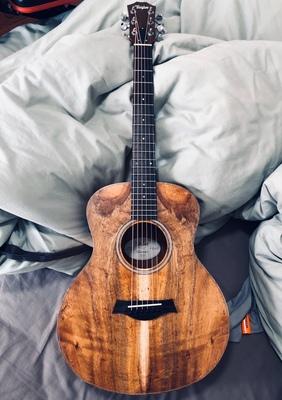 泰勒旅行吉他.jpg