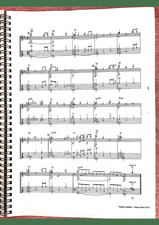 The Godfather Medley(押尾专辑版)吉他谱6