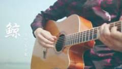 吉他演奏《鲸》